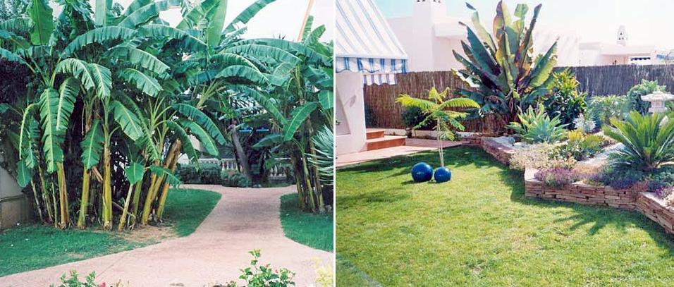 construcci n de jardines dise o de jardines dimoba
